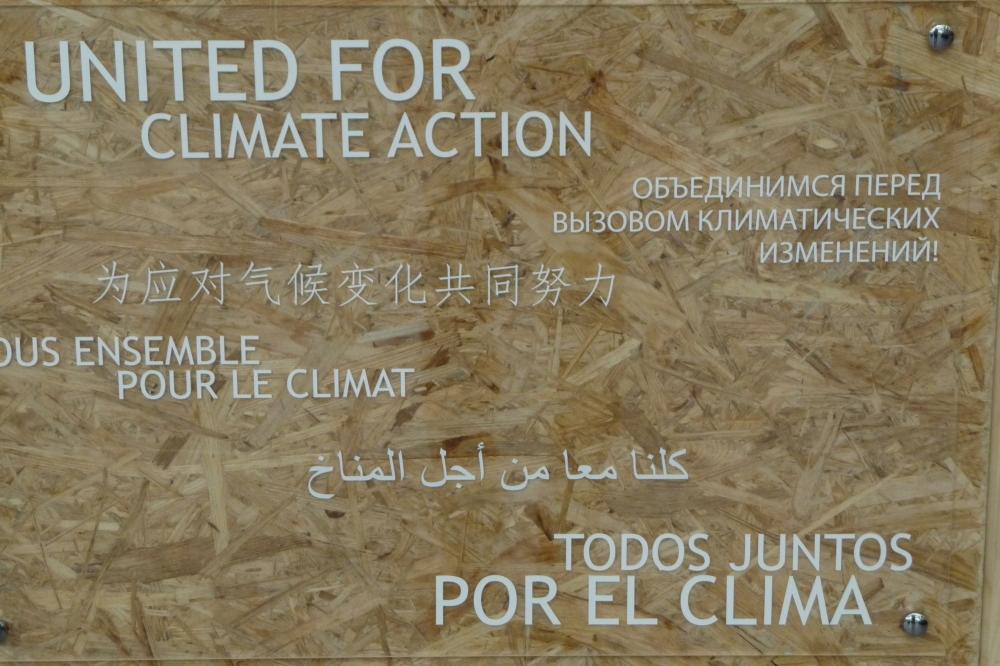Der Bonner Wrap-up: Über die WG, die gerne putzen würde