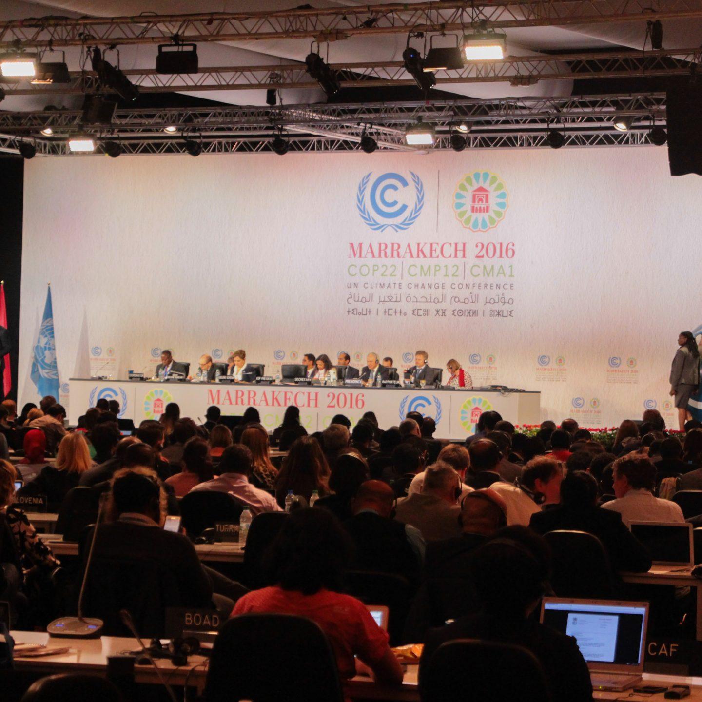 """Junge Klimaschützer in Marokko: """"Jemand muss die Leute dran erinnern, warum wir hiersind"""""""
