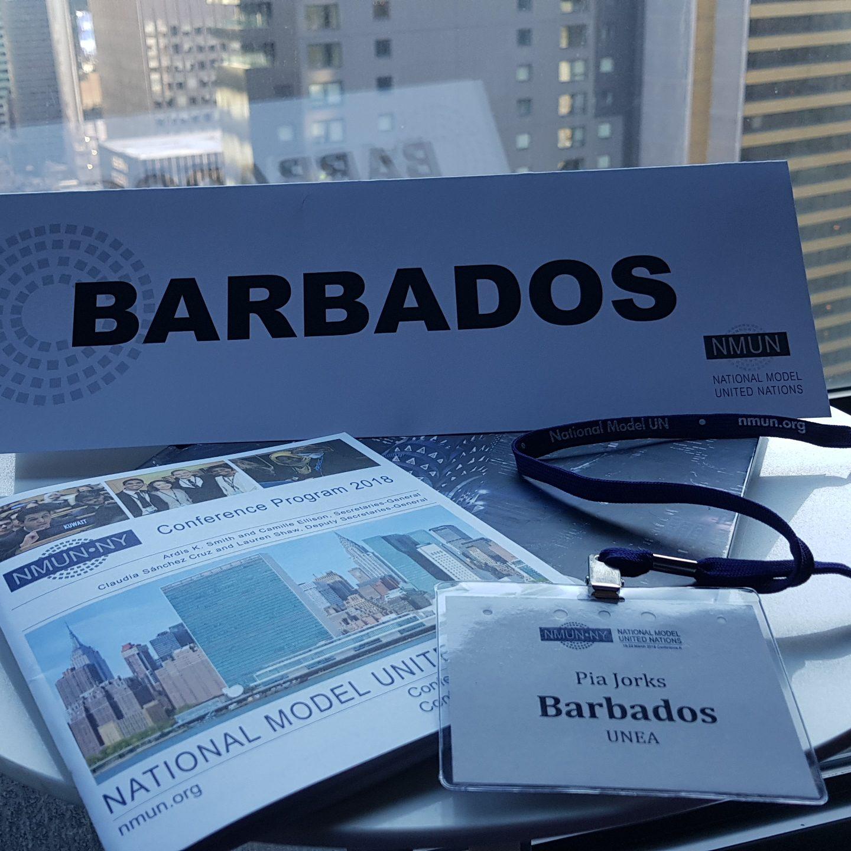 Tropfen im Meer? Ich habe Barbados in der UNEA vertreten