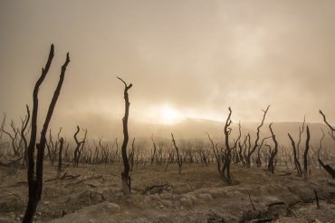 Sonderbericht des Weltklimarates — Können wir uns jetzt zurücklehnen?
